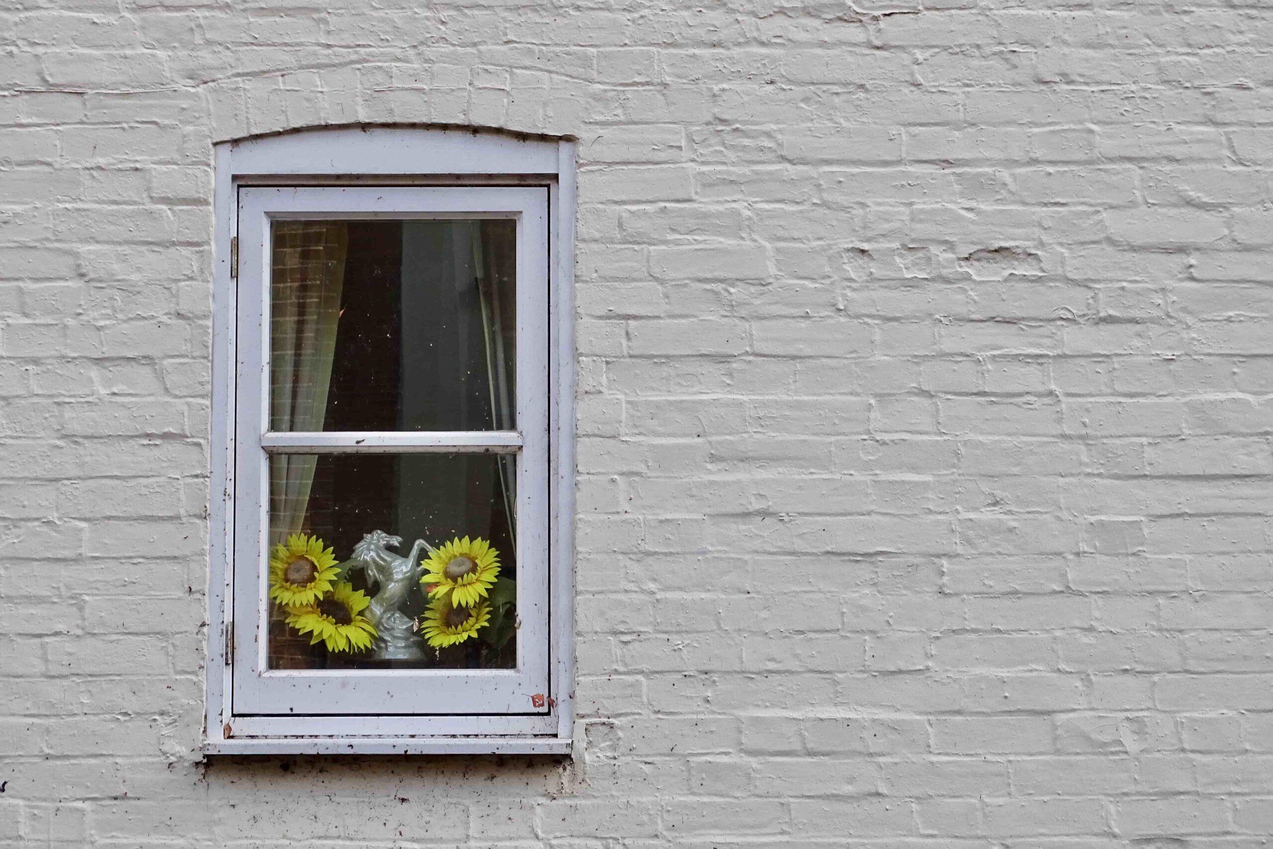 Hoe kies je het juiste bedrijf voor het plaatsen van je ramen en deuren?